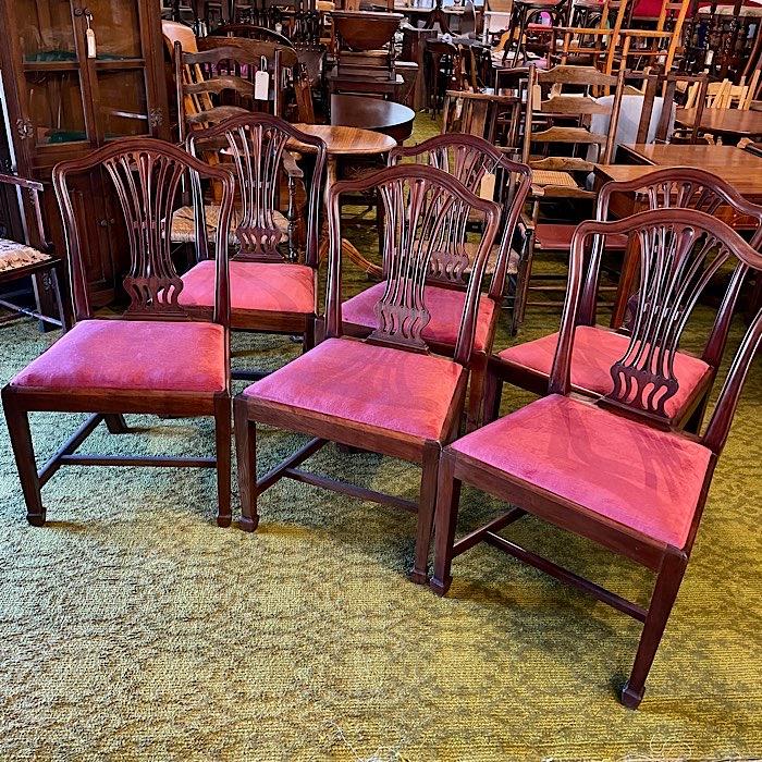 Six Georgian Mahogany Dining Chairs