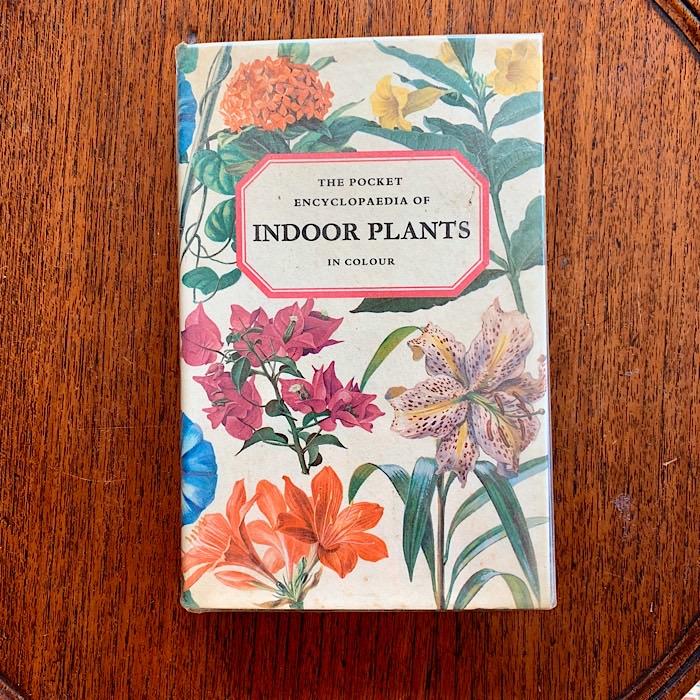 The Pocket Encyclopaedia Of Indoor Plants
