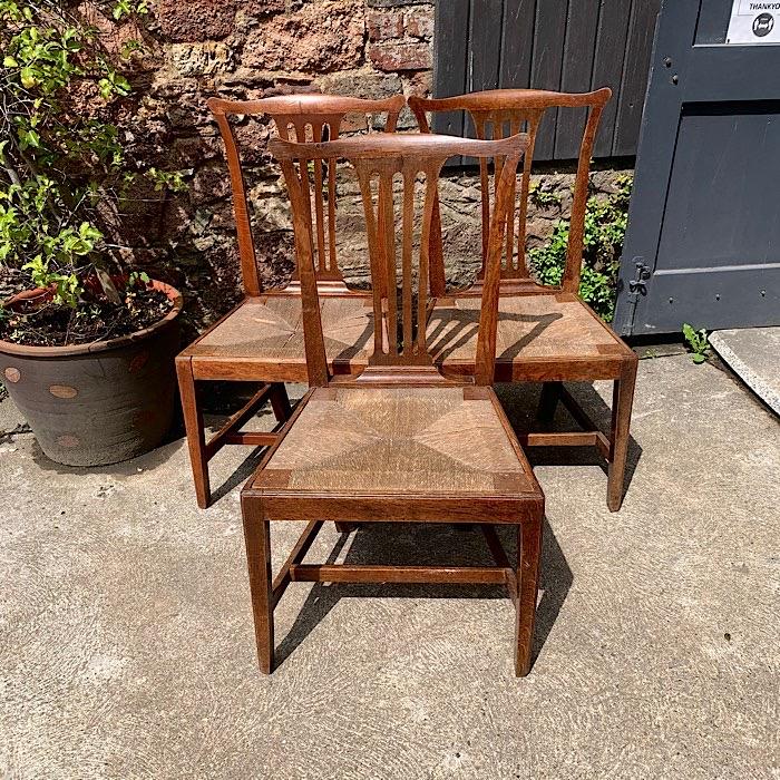 Three Georgian Oak Rush Seated Chairs