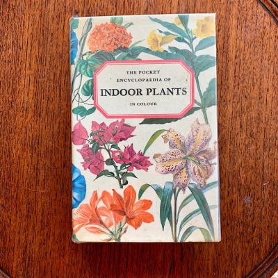 The Pocket Encyclopaedia Of Indoor Plants