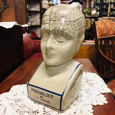 Vintage Style Phrenology Head